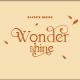 wondershine - GraphicRiver Item for Sale