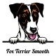 Head Fox Terrier Smooth - Dog Breed. Color Image - GraphicRiver Item for Sale