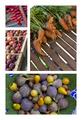 Freshness on market stalls - PhotoDune Item for Sale