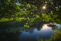Sun shining over small pond on a calm day - PhotoDune Item for Sale