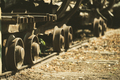 Iron wheels of an old train riding on the rails - PhotoDune Item for Sale