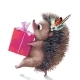 Cute Hedgehog with Present Birthday Box - GraphicRiver Item for Sale