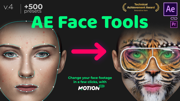 Face Tools -> Stabilization