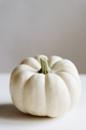 White pumpkin on a whtie background. - PhotoDune Item for Sale