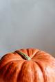 Orange pumpkin on a whtie background. Halloween concept - PhotoDune Item for Sale