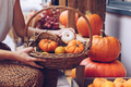 Woman holding a basket full of pumpkins . - PhotoDune Item for Sale