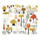Autumn Elements Collection in Flat Style. Mushroom - GraphicRiver Item for Sale