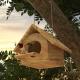 Bird Box - 3DOcean Item for Sale