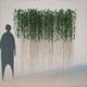 Cissus Verticillata - Curtain Ivy - 3DOcean Item for Sale
