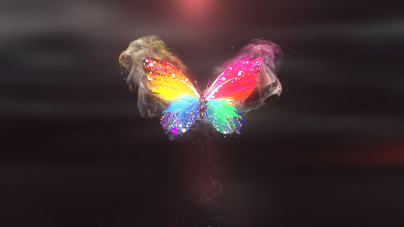 Colorful Butterfly Logo Reveal 4K