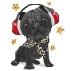 Black Pug Dog with Headphones on a White - GraphicRiver Item for Sale