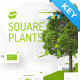 Squareplants Ecology & Environment Keynote Template - GraphicRiver Item for Sale