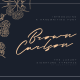 Brown Carlson – The Luxury Signature - GraphicRiver Item for Sale