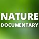 Documentary Nature - AudioJungle Item for Sale