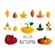 Colorful Seasonal Fall Vector Elements - GraphicRiver Item for Sale