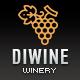 Diwine - Winery & Wine Shop, Vineyard WordPress Theme - ThemeForest Item for Sale