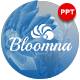 Bloomna Minimalist Presentation Template - GraphicRiver Item for Sale