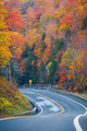 Winding Road Through Autumn Trees with Fall Colors in New England - PhotoDune Item for Sale