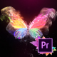 Colorful Butterfly Logo Reveal 4k- Premiere Pro - VideoHive Item for Sale