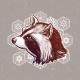 Raccoon Portrait - GraphicRiver Item for Sale