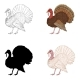 Vector Set of Turkey Illustrations - GraphicRiver Item for Sale