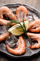 Fresh shrimps - PhotoDune Item for Sale