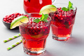 Lingonberry and lime punch or limeade in glass, horizontal - PhotoDune Item for Sale