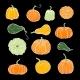 Set of Decorative Orange and Green Pumpkins - GraphicRiver Item for Sale