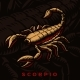 A Vector Illustration of Scorpio Zodiac Sign - GraphicRiver Item for Sale