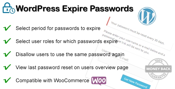 WordPress Expire Passwords