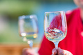 Hand holds two glasses with white wine next to grapes in nature - PhotoDune Item for Sale