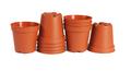 Mini Plastic flower Pots - PhotoDune Item for Sale