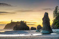 Olympic National Park, Washington, USA at Ruby Beach - PhotoDune Item for Sale
