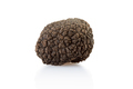 Single black truffle isolated on white, clipping path included - PhotoDune Item for Sale