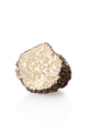 Black truffle half isolated on white, clipping path included - PhotoDune Item for Sale