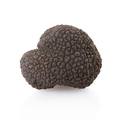 Black truffles isolated on white, clipping path included - PhotoDune Item for Sale