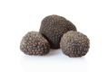 Black truffles group isolated on white, clipping path included - PhotoDune Item for Sale