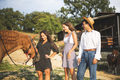 Three Friends Laughing and Having Fun in a Ranch with a Brown Horse - PhotoDune Item for Sale