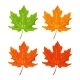 Maple Leaf - GraphicRiver Item for Sale
