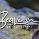 Beaversa - GraphicRiver Item for Sale