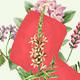 Dryad - Botanical Illustrations - GraphicRiver Item for Sale