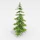Fir tree - 3DOcean Item for Sale