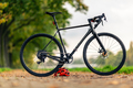 Road gravel bicycle on city street under trees - PhotoDune Item for Sale