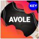 Avole Creative Keynote Template - GraphicRiver Item for Sale