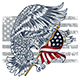 Eagle Bird - GraphicRiver Item for Sale