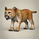 Low Poly Baby Lion - 3DOcean Item for Sale