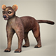 Low Poly Fossa - 3DOcean Item for Sale