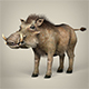 Low Poly Warthog - 3DOcean Item for Sale