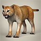 Low Poly Mountain Lion - 3DOcean Item for Sale