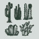 Desert Cactus Hand Drawn Vector Graphics - GraphicRiver Item for Sale